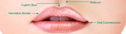 Perfect Lips Treatment